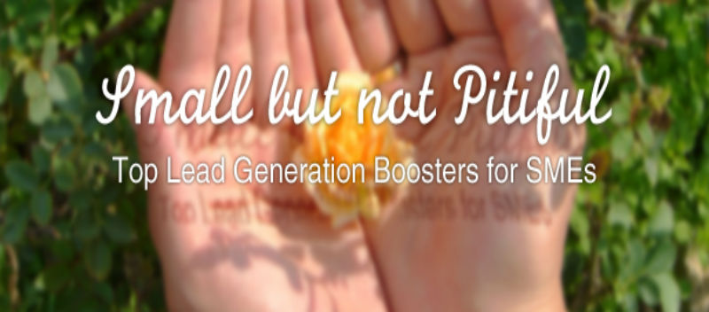 Small but not Pitiful Top Lead Generation Boosters for SMEs