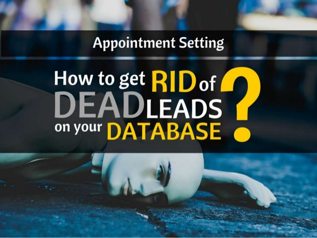 How to Get rid of Dead Leads on Your Database?