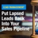 Lead Management Put Lapsed Leads Back Into Your Sales Pipeline